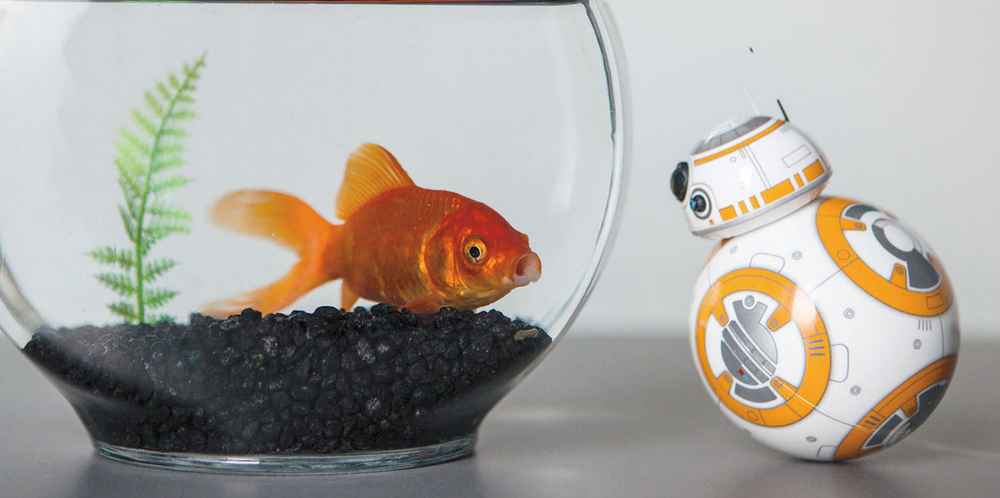 sphero-bb8-star-wars