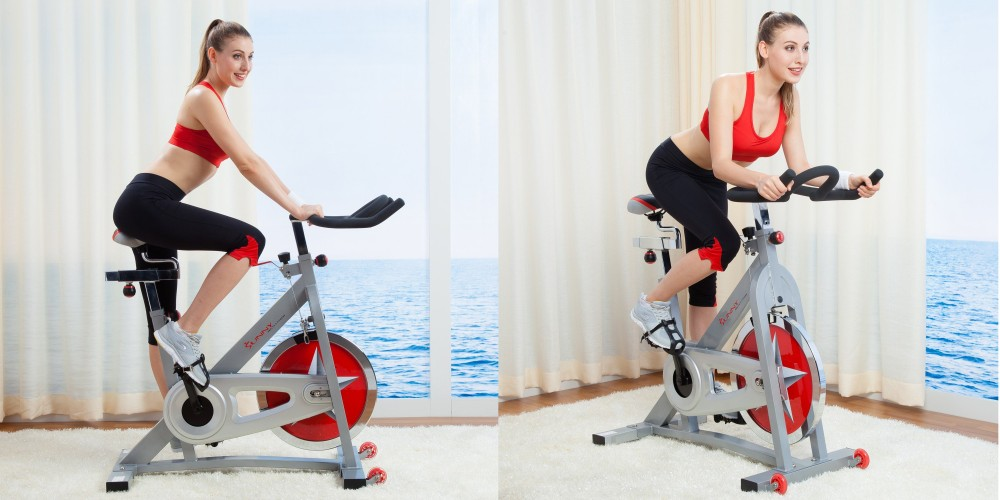 Sunny Health & Fitness Pro Indoor Cycling Bike-2