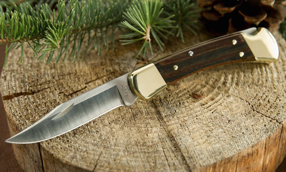 Buck Knives 110 Famous Folding Hunter Knife with Genuine Leather Sheath-1