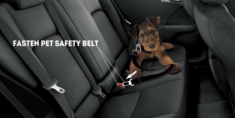 etekcity pet dog nylon car seat
