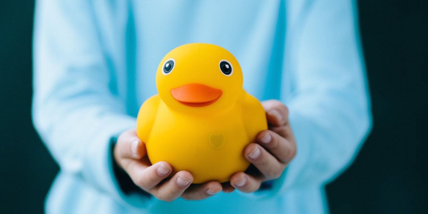 edwin-the-duck-toy-pi-sale-01