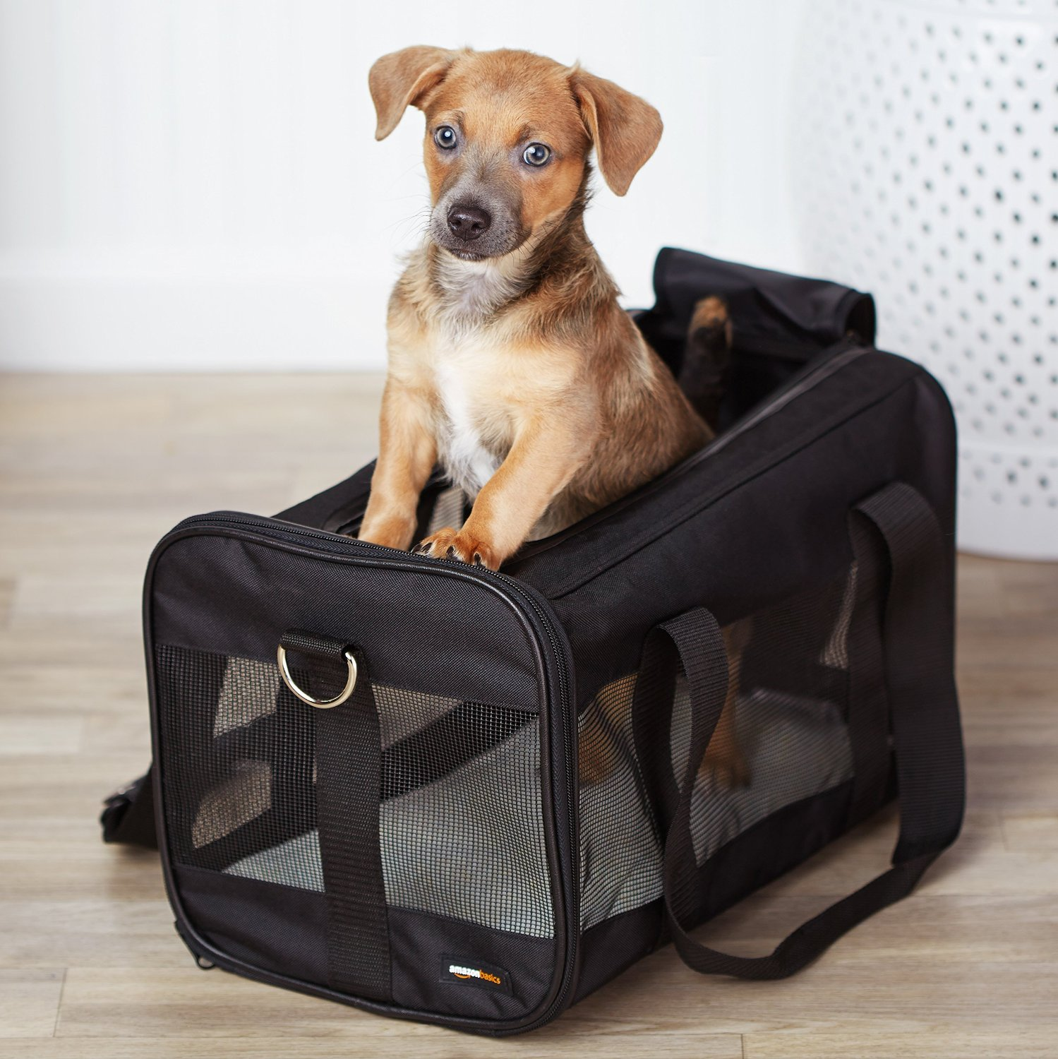 amazonbasics-soft-sided-pet-travel-carrier
