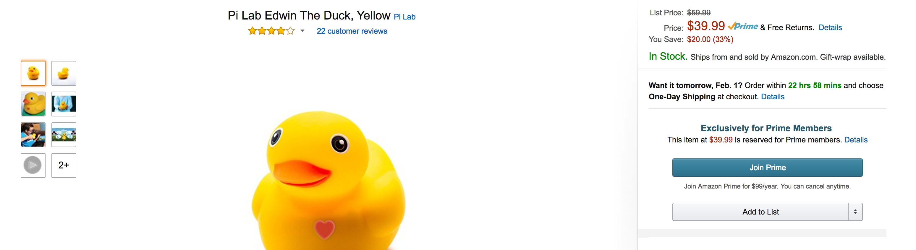 edwin-pi-duck