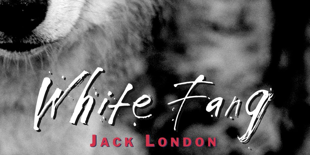 white-fang-jack-london