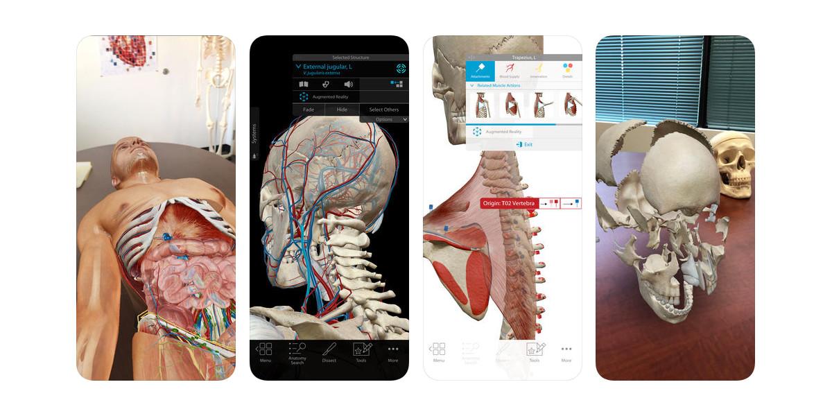 Human Anatomy Atlas 2018 for iOS gets massive price drop today: $1 ...