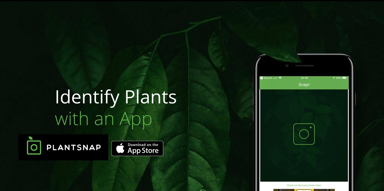 Popular PlantSnap Identification iOS app at lowest price ever: $1 (Reg. $4)