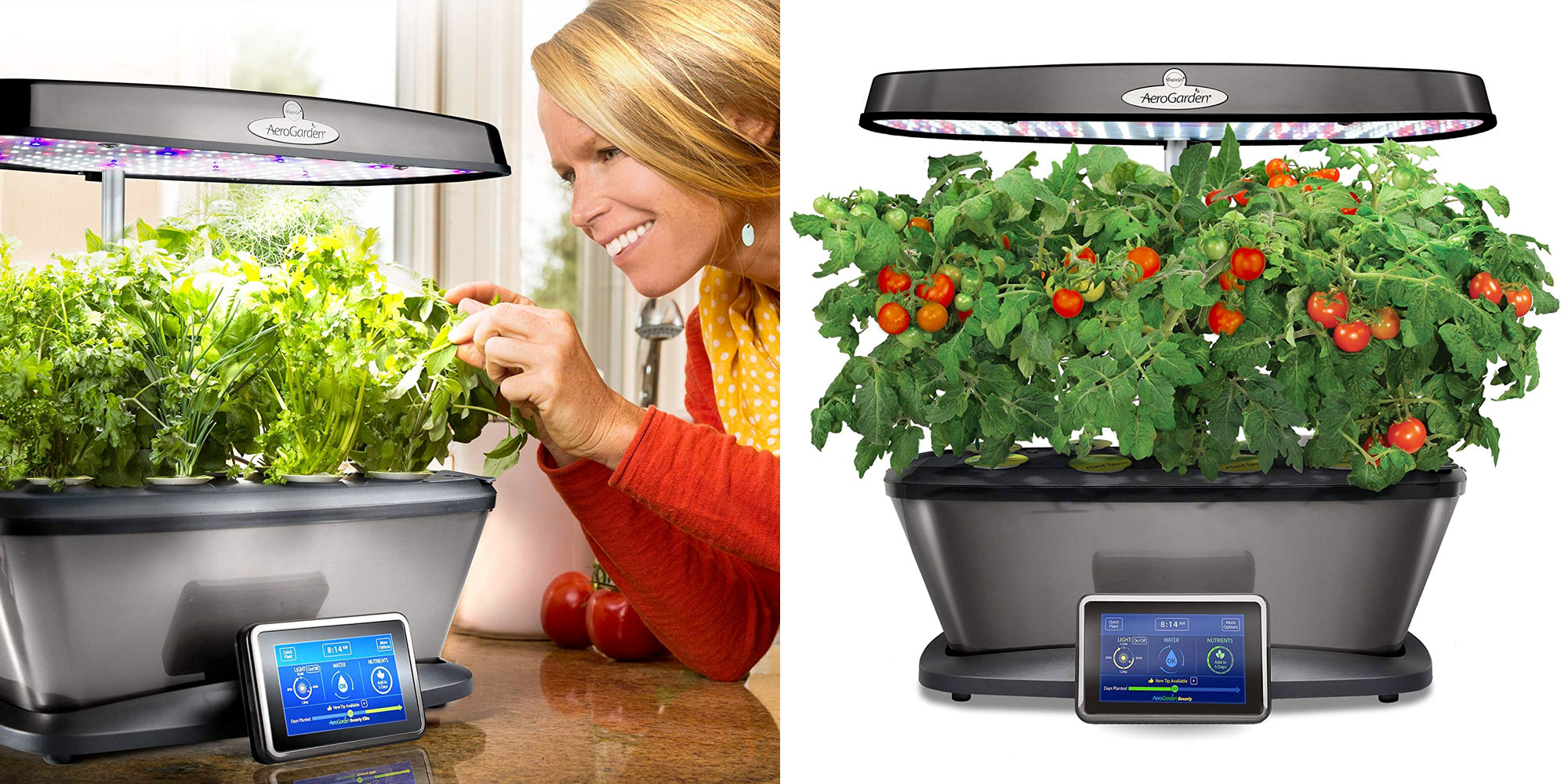 how to grow your own seeds in aerogarden
