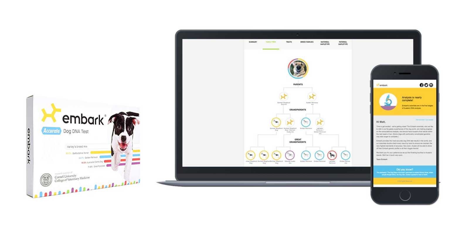 Learn all about your dog thanks to the Embark DNA Test Kit for $129 (Reg. $189, today only)