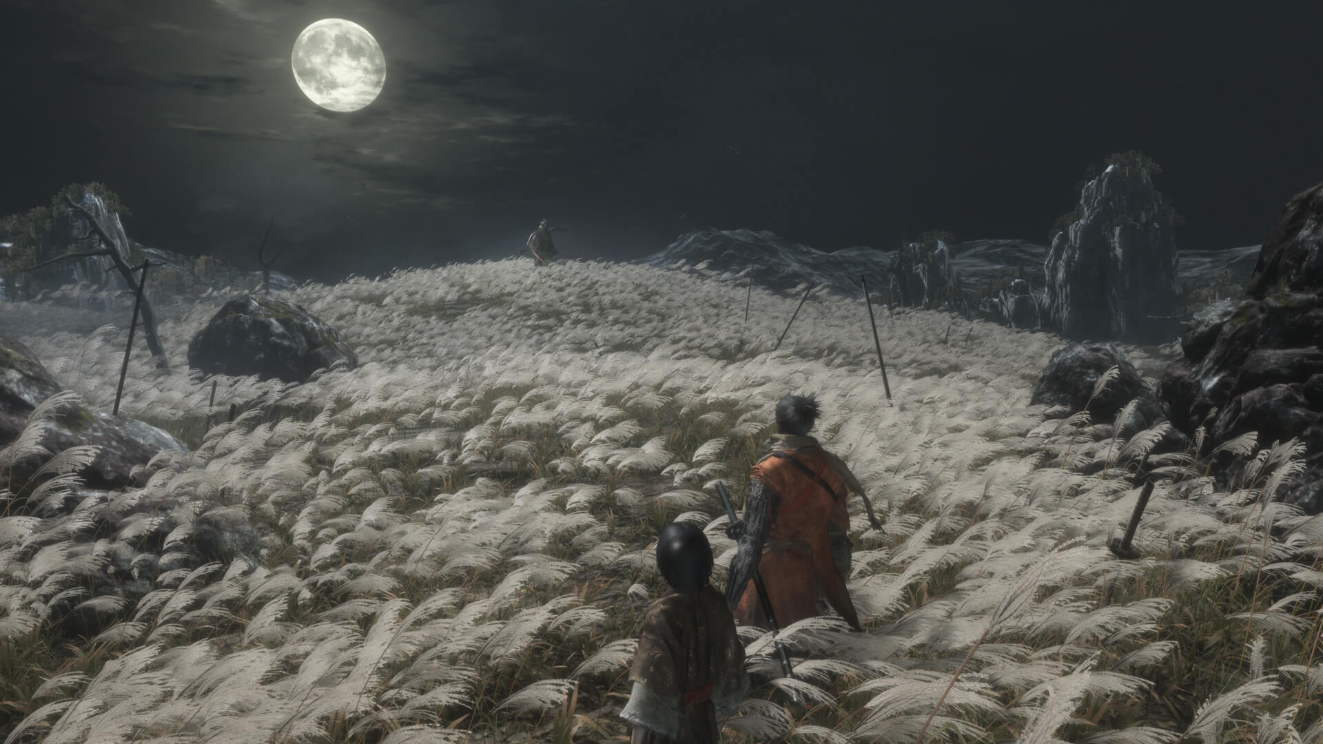 Sekiro Shadows Die Twice releases this week