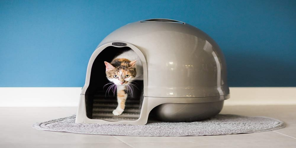 This domed litter box features grooved steps, get it on sale for only $15