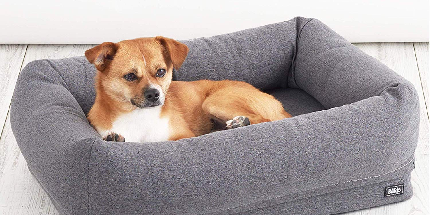 Get your pup a new bed from $25 in today's BarkBox Amazon sale (Up to 53% off)