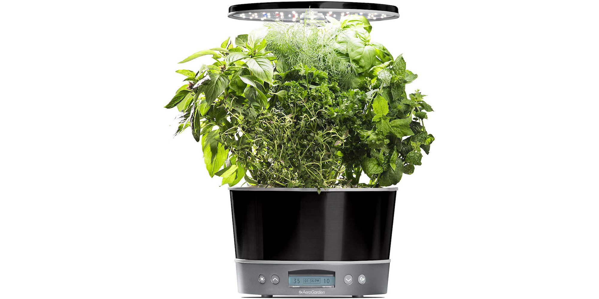 Get fresh herbs all year with an Elite 360 AeroGarden for $75 (Reg. $142+) - 9to5Toys