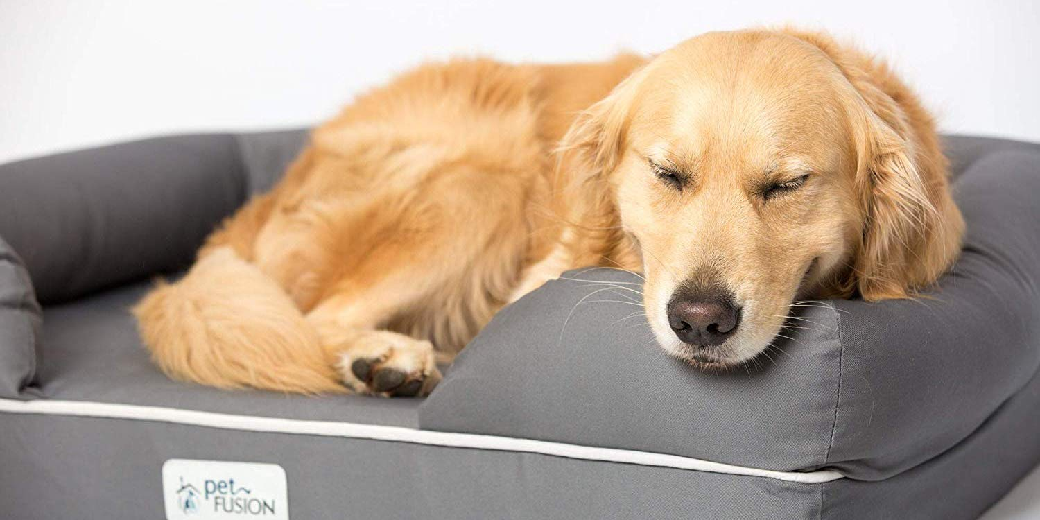 Amazon 1-day dog bed/blanket sale up to 25% off with deals from $13 - 9to5Toys
