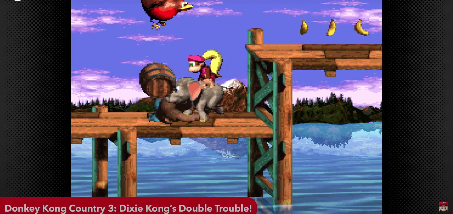 Donkey Kong Country 3 comes to Switch Online