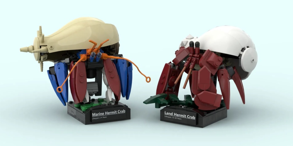 June LEGO Ideas