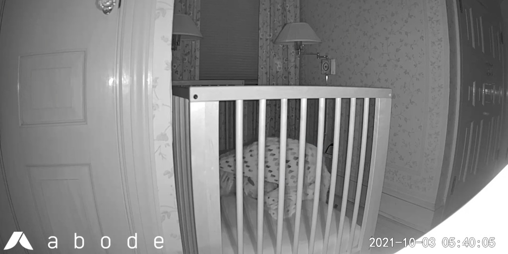 Night vision mode from the Abode Cam 2.